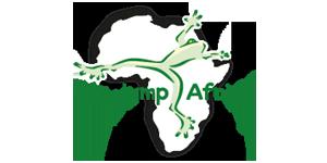 Big Jump Africa Logo