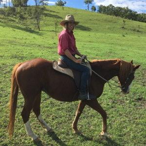 eine junge Frau reitet auf einem Pferd