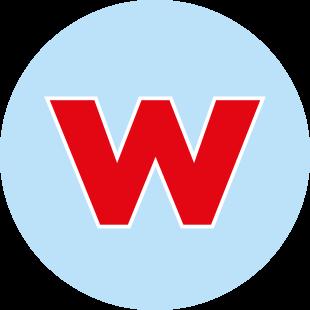 Favicon Logo weltweiser