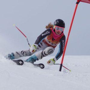 Skifahrerin beim Slalom