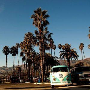 VW-Bus vor Palmen