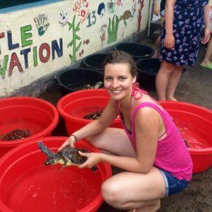 Freiwillige bei der Arbeit mit Schildkröten
